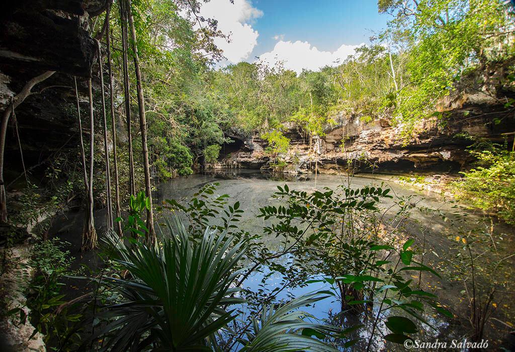 Cenote Xtogil, maravilloso lugar