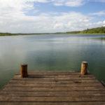 Punta Laguna, reserva natural del mono araña