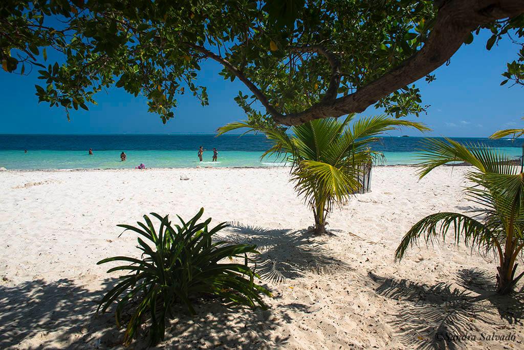 Playa Pez Volador, una joyita escondida en Cancún