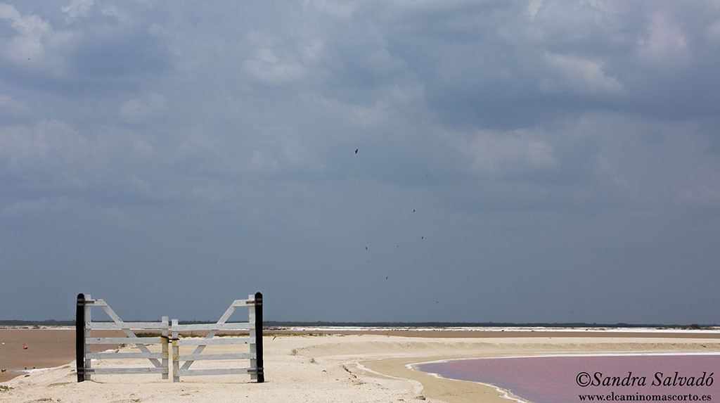 Las Coloradas, Yucatan