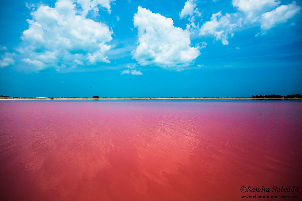 Las Coloradas, la sal de la Península