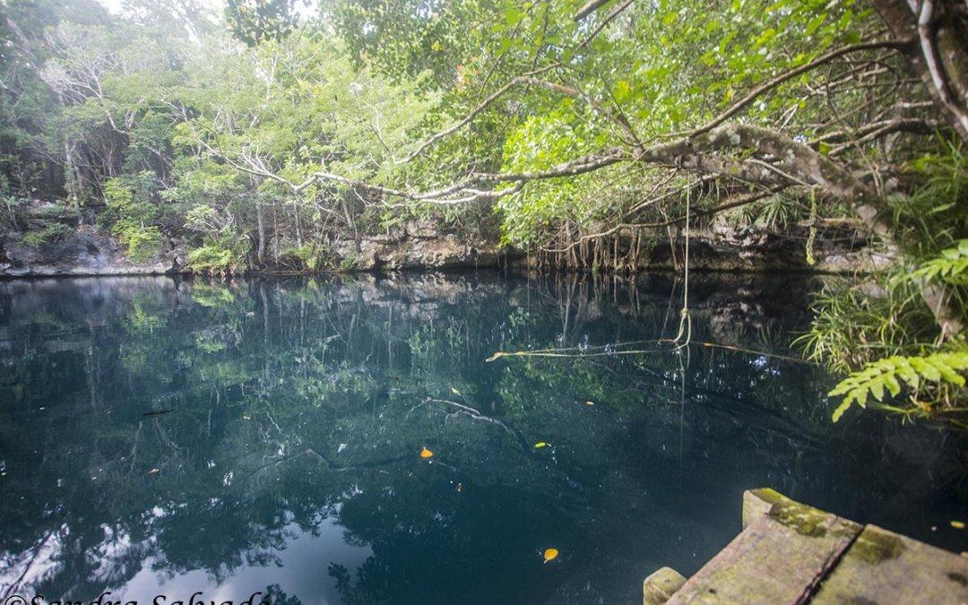 Cenote Angelita, la haloclina más preciada