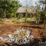 Ecoturismo en comunidades mayas de la Península de Yucatán