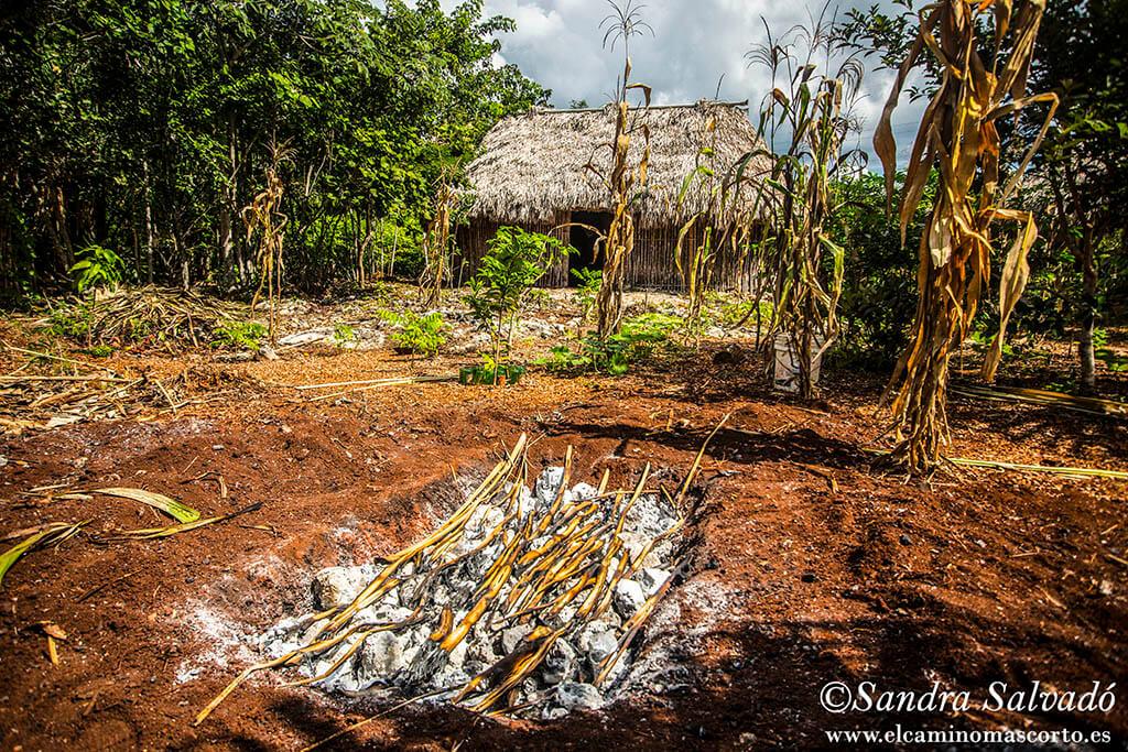Ecoturismo rural en comunidades mayas de la Península