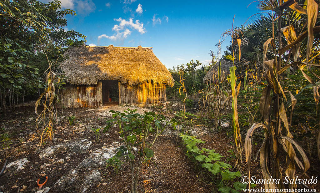 Centro Ecoturistico Kiichpam Ka'ax, Selva Bonita. Chunhuhub,