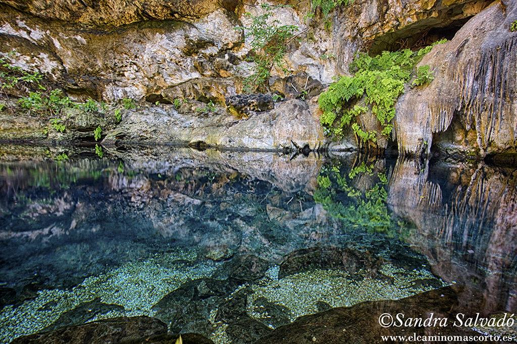 Cenote Yaxcabaltun, Homun