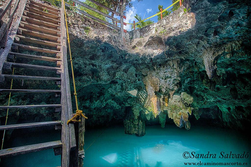 Cenote la Noria, joyita de la Ruta de los Cenotes