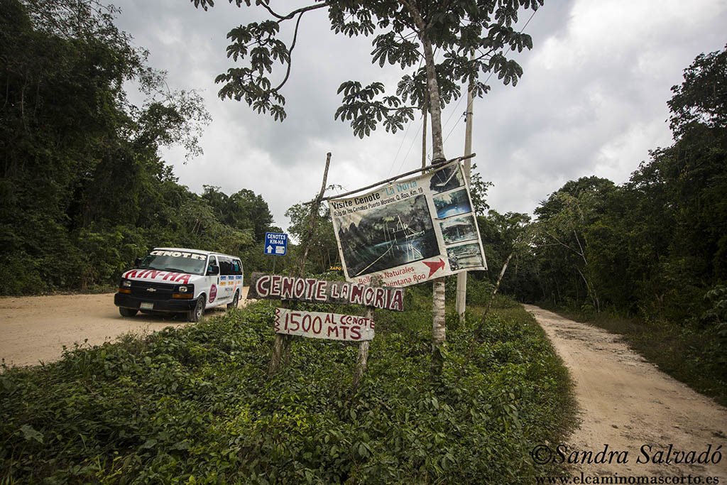 Ruta de los Cenotes, Puerto Morelos