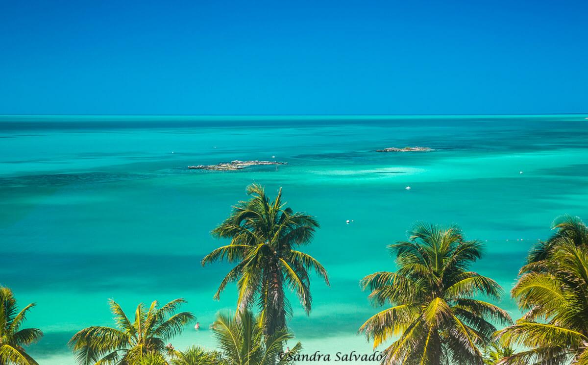 Isla Contoy, Quintana Roo
