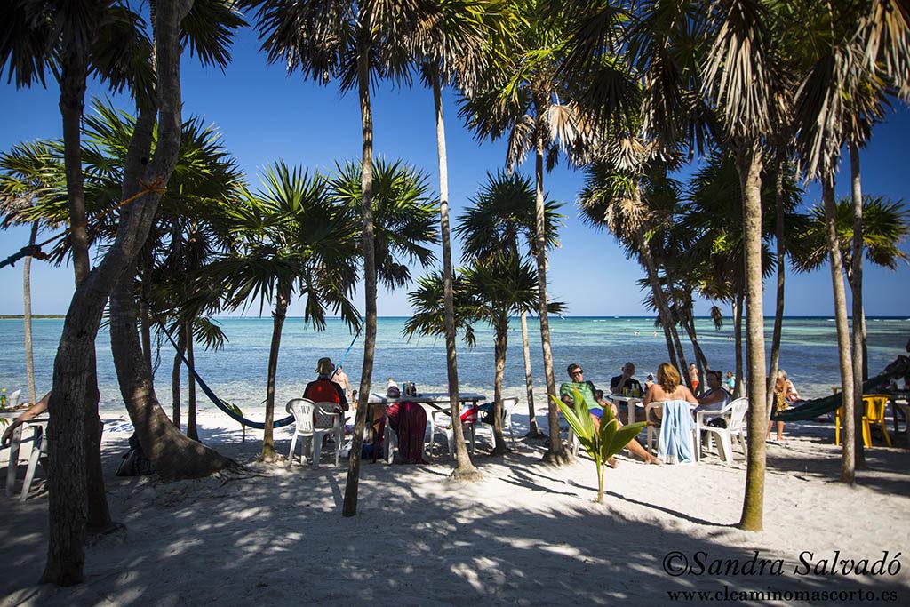 Bahía Solimán,Quintana Roo Restaurante Chamico's