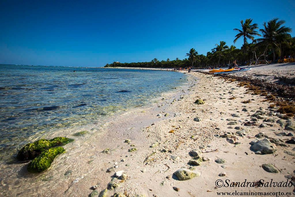 ¿Qué población costera elegir en el Caribe mexicano?