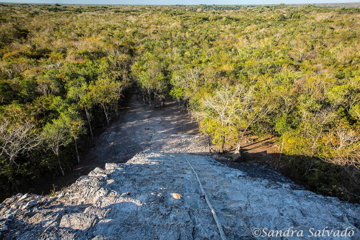 Zona arqueologica Cobá, Quintana Roo