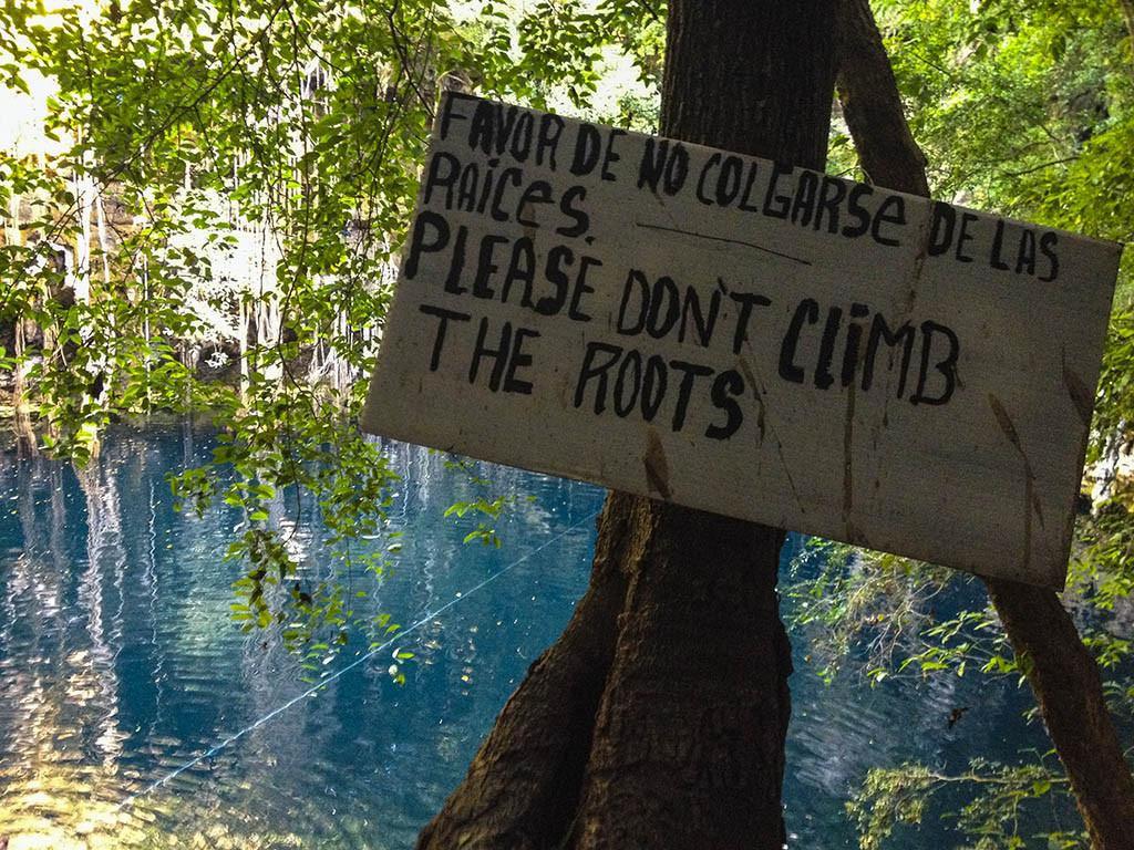 Educación por el respeto del entorno