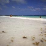 Xpu-há, domingos de Caribe