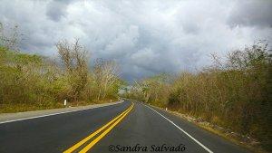 transporte carretera yucatan