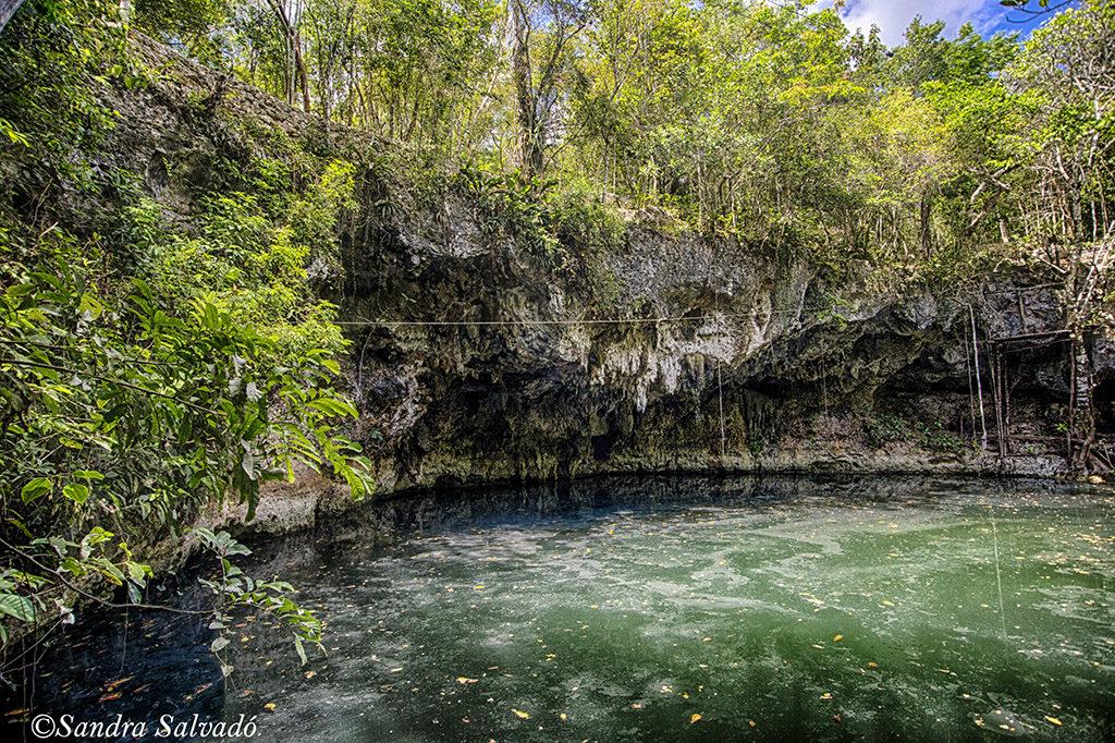 Cenote Blanca Flor, Puerto Morelos