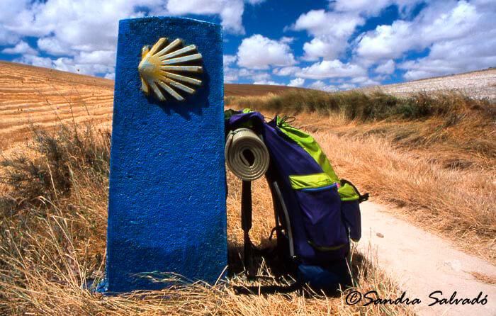 Mi Camino, el de Santiago.