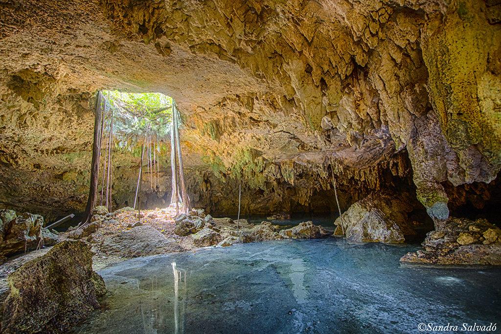 Cenote Venado, Puerto Morelos
