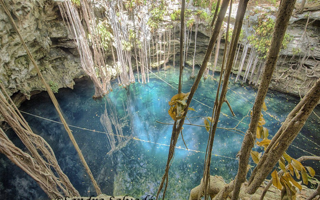 Cenote Lol Ha, cristalina flor de agua