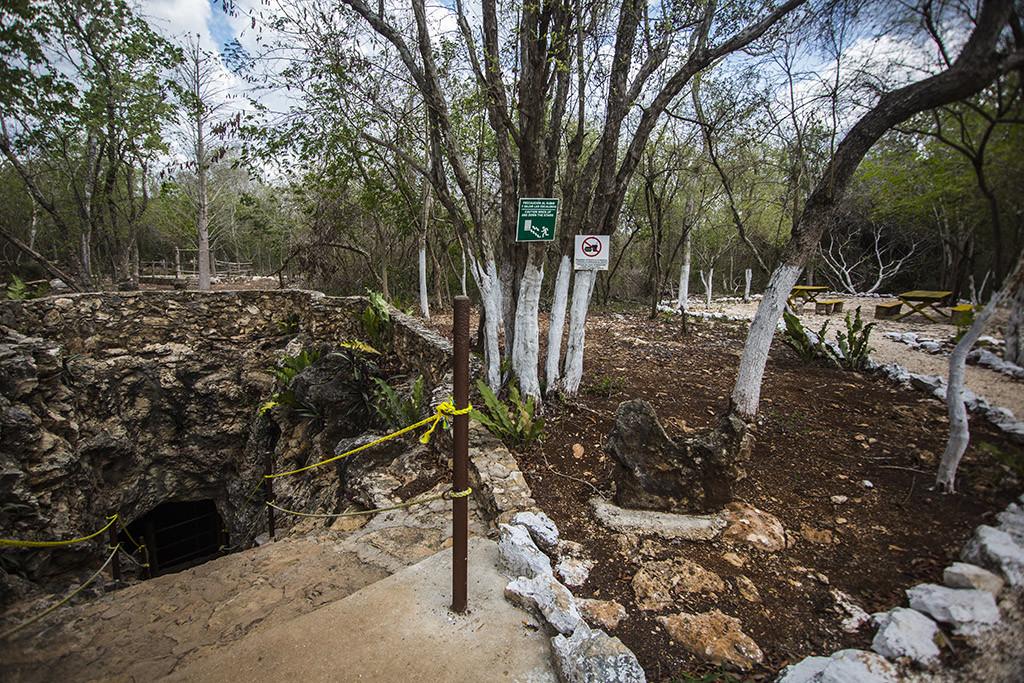 Cenote_Palomitas_06