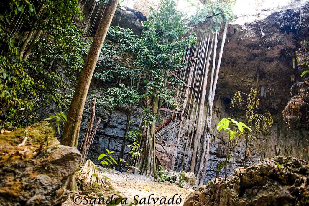 Cenote Sac Aua, Yucatán.