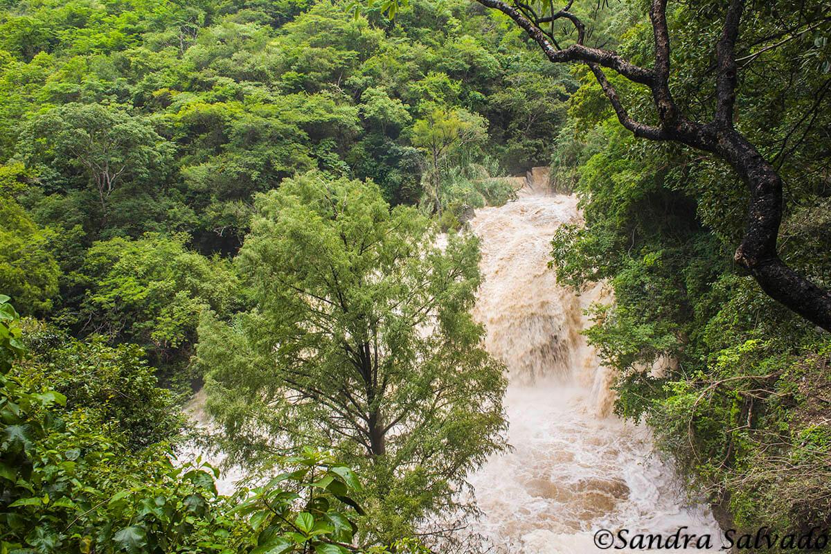 Cascada del Chiflón, Chiapas