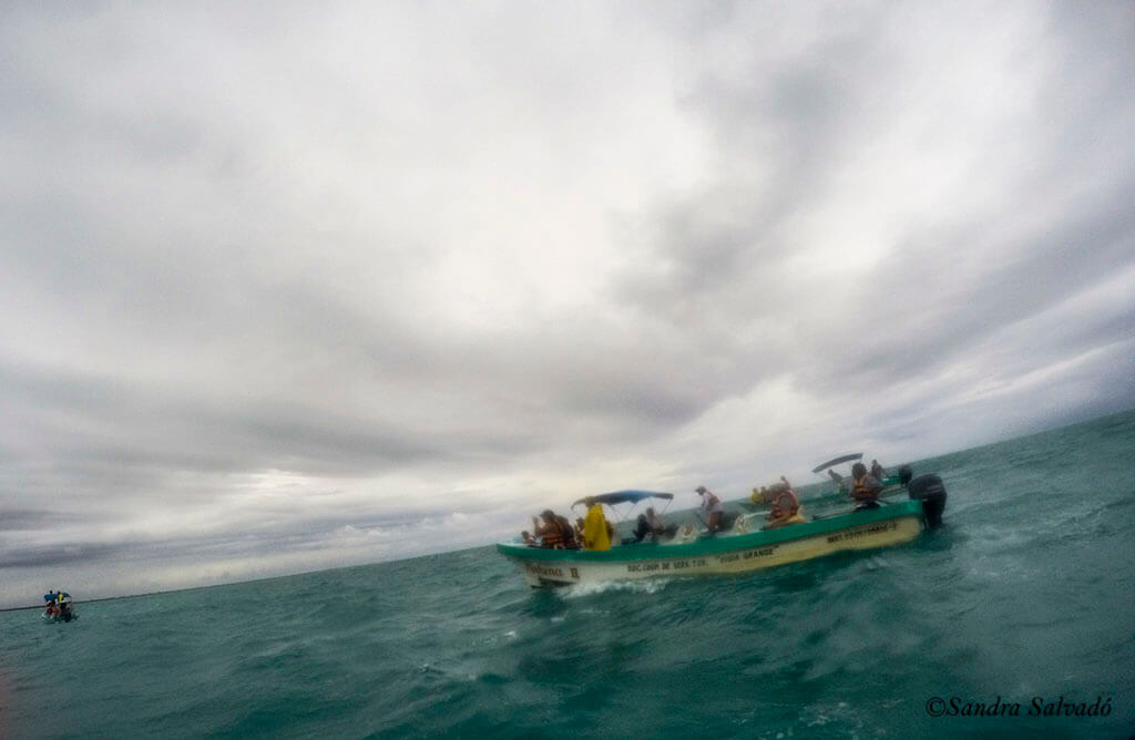 Punta Allen, la costa más viva de Riviera Maya