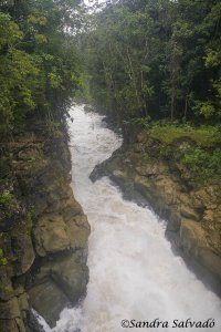 Las Nubes, Reserva Biosfera Montes Azules, Chiapas