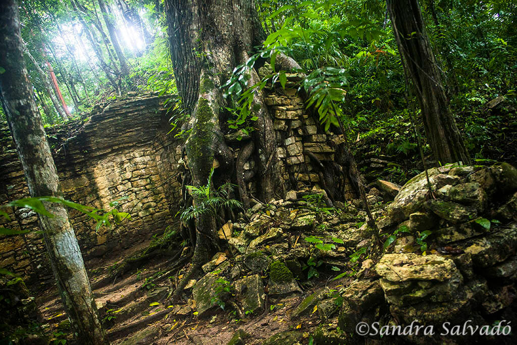 Zona arqueologica Piedras Negras, Guatemala.