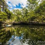 Cenote Popol Vuh, camino Leona Vicario