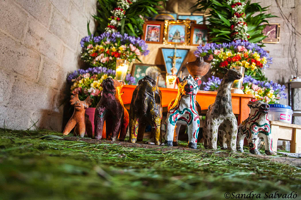 Altar maya, Zinacantan, Chiapas