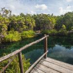 Cenote Cristal, remanso de paz