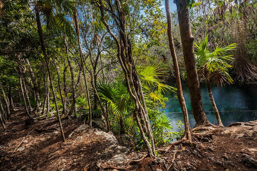 Cenote Escondido, Quintana Roo
