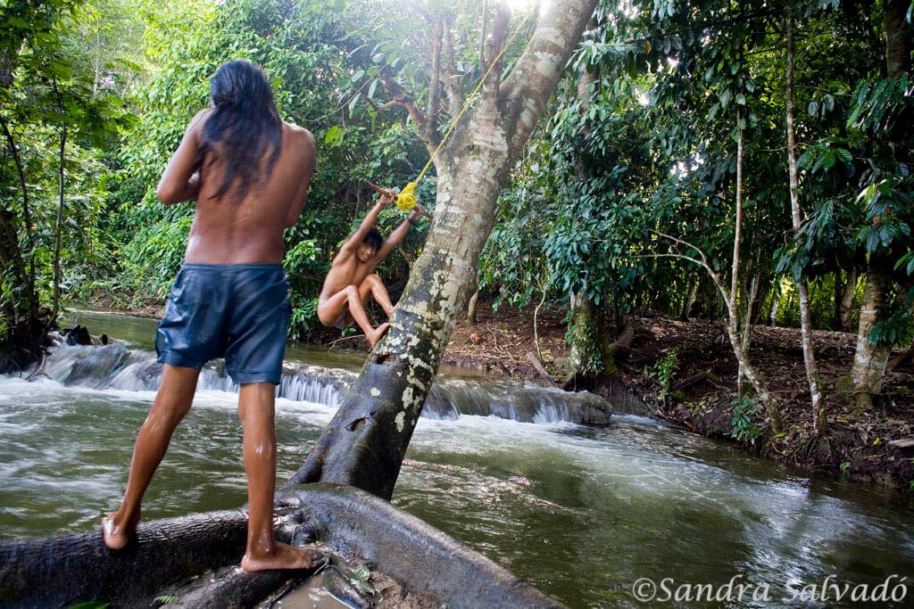 La selva lacandona desde Lacanjá Chansayab