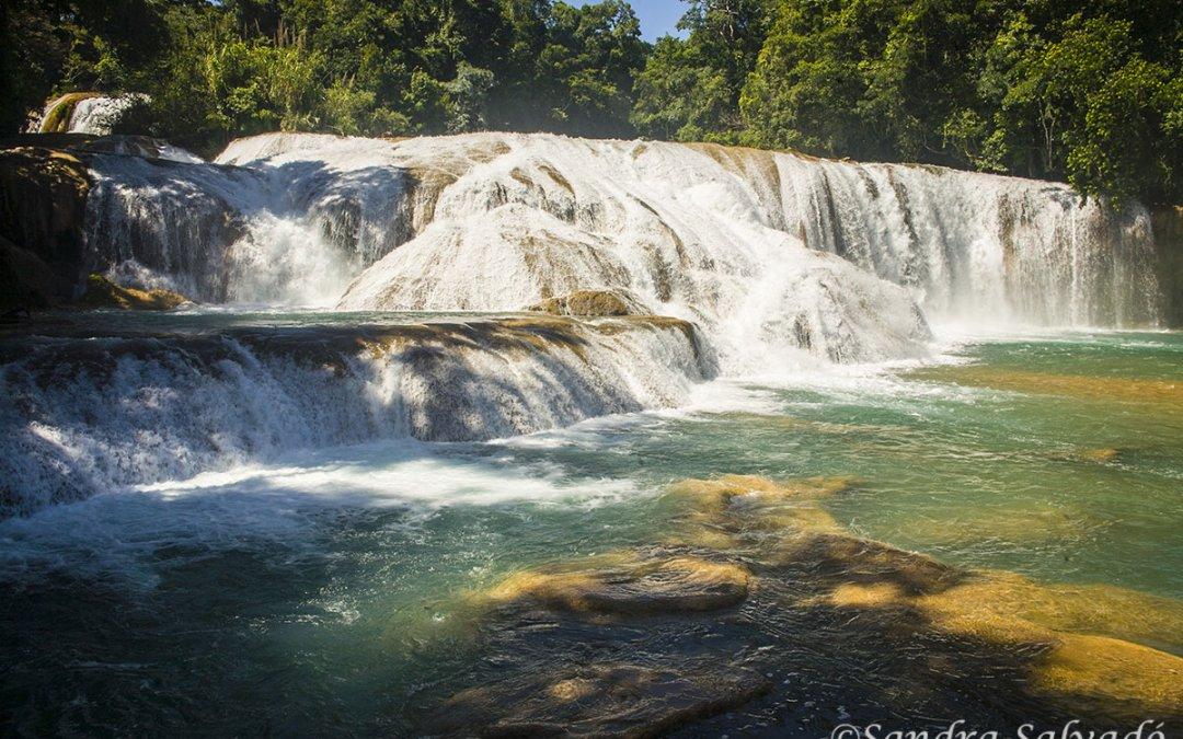Agua Azul, las aguas turquesas de Chiapas