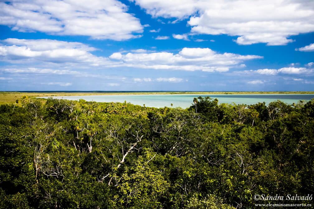 Sian Ka'an Biosphere Reserve. Quintana Roo, Mexico