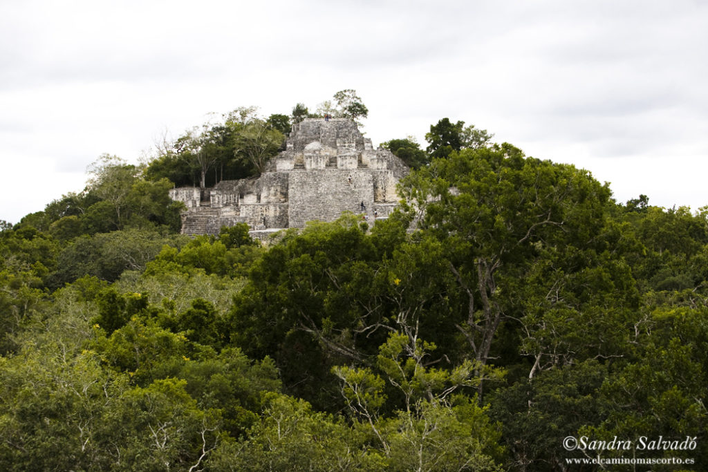 Calakmul archaeological site, Yucatan, Mexico.