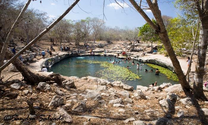 Zona Arqueológica Dzibilchaltún, cenote Xlacah, Yucatán, México.