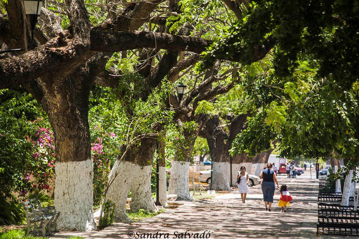 Paseo de Montejo, Mérida, Yucatán