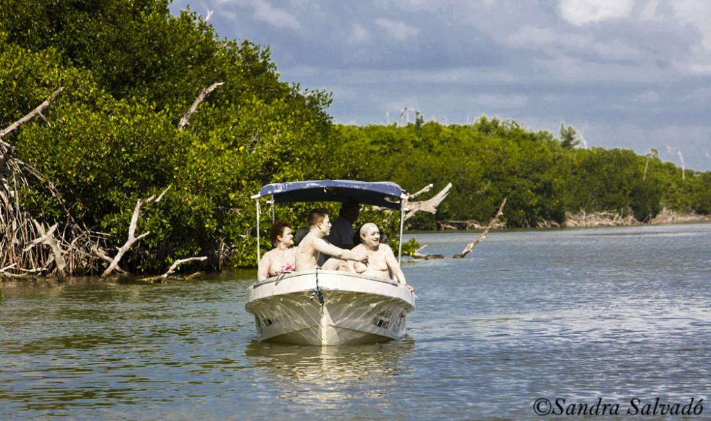 Ria Lagartos Biosphere Reserve, Yucatan Peninsula, México.