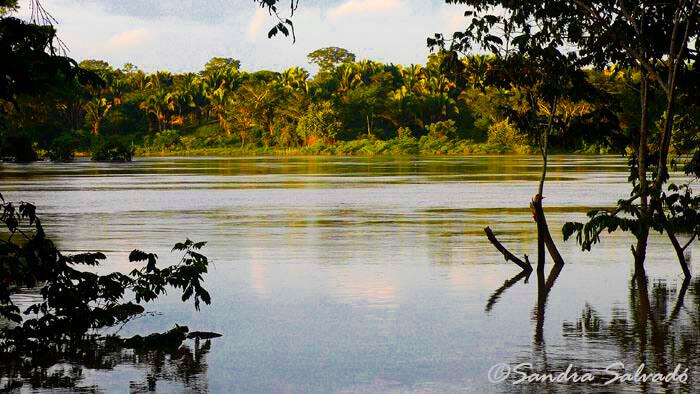 De Palenque a Comitán por la Fronteriza del Sur