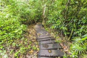 Reserva Biosfera Sian Ka'an, Zona arqueológica Muyil, Quintana Roo