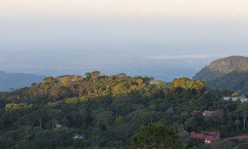 Guía para conocer la Ruta del Café en Chiapas