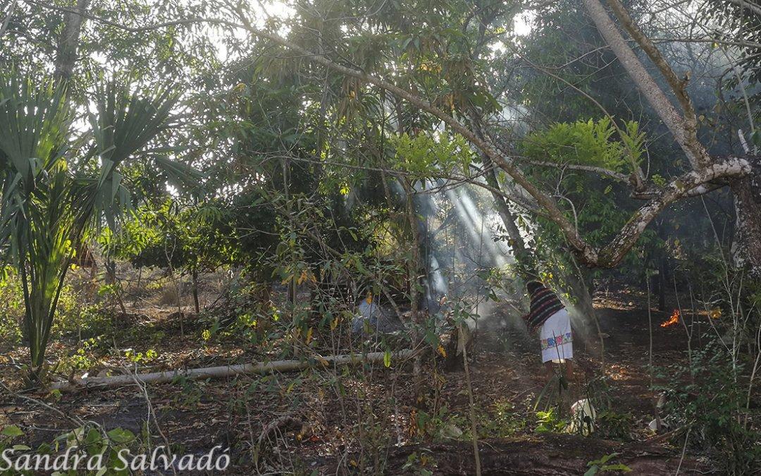 Poblado de Yaxunah, gran sabor a cultura maya