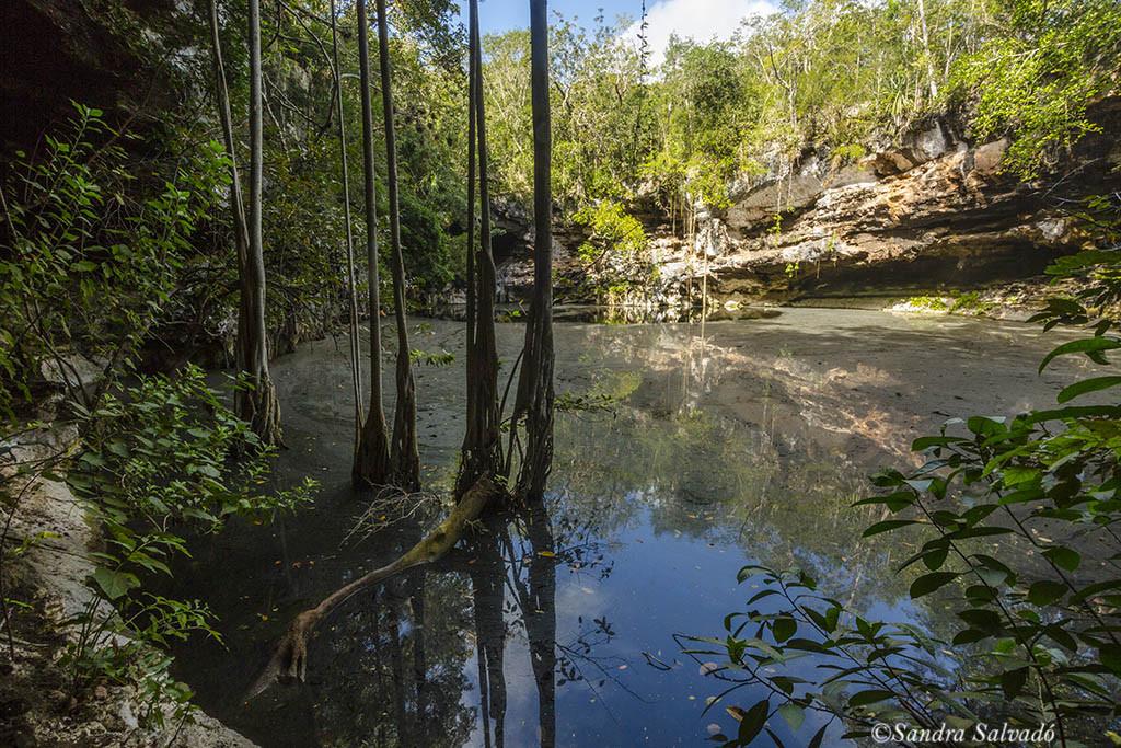 Cenote Xtogil
