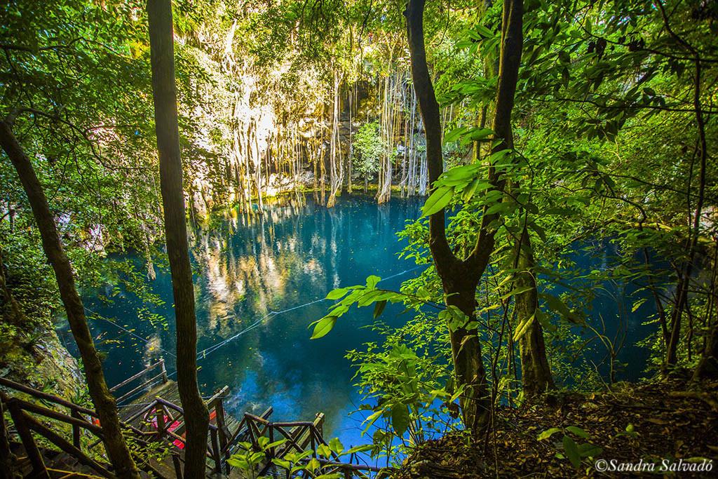 cenote_yokdzonot_yucatan