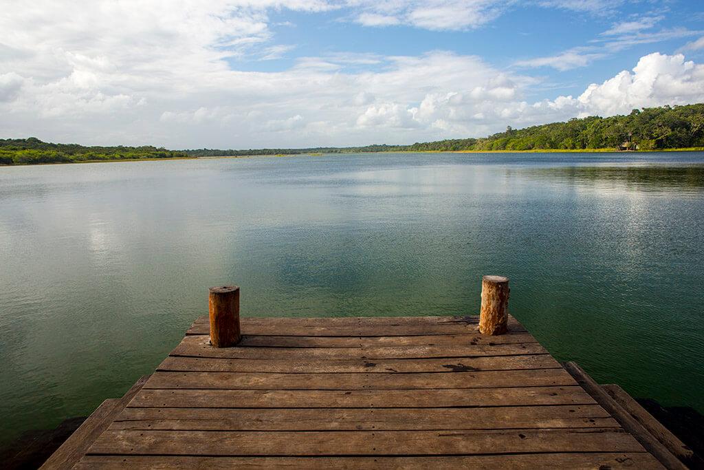 Punta Laguna, reserva natural del mono araña cercana a Riviera Maya