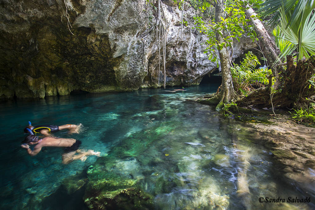 big cenote tulum