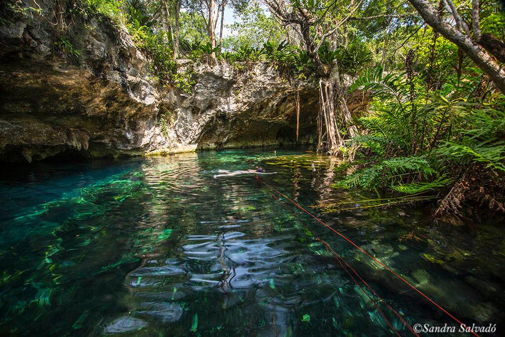 gran_cenote_tulum