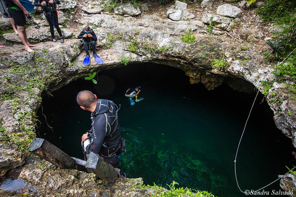 Skull Cenote, entrance to a beautiful dive